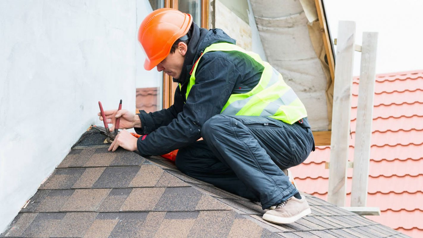 Roof Replacement Service Morris Park NY