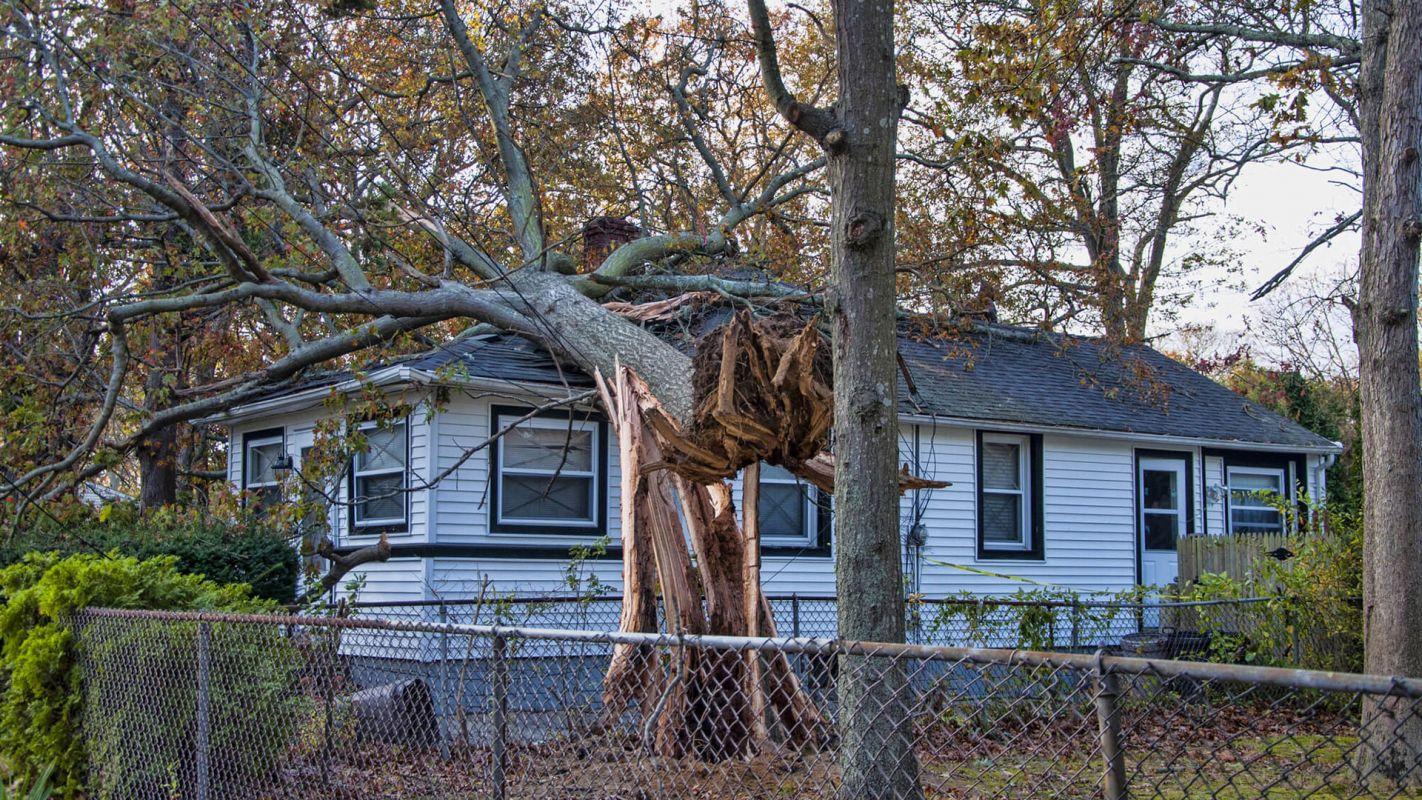 Storm Damage Restoration Fayetteville GA